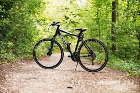 В районе Марьино появится городской велопрокат