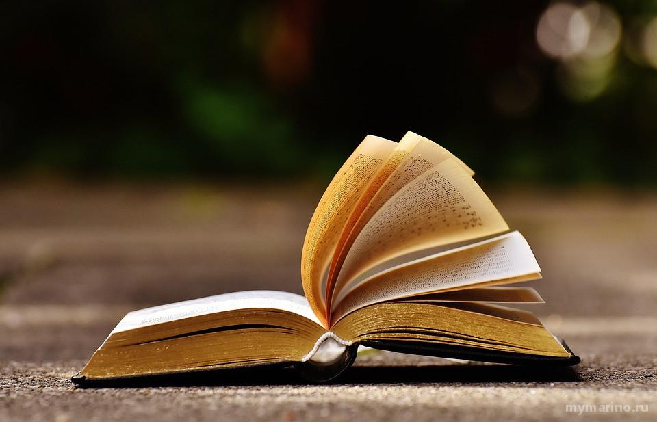 В Марьино в новогодние каникулы будут работать библиотеки